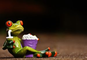 frog-1672886_1920